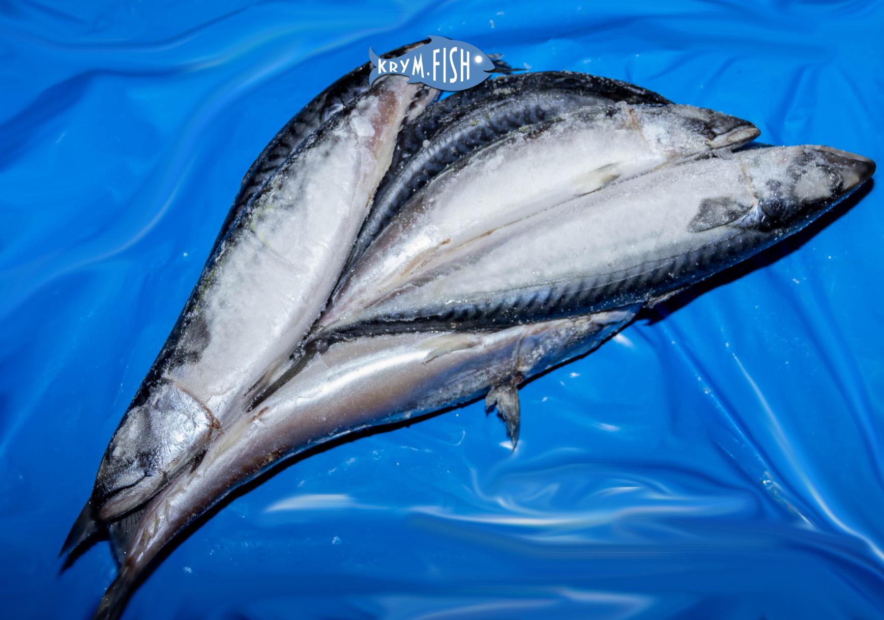 рыба крыма фото и описание